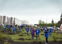 Семь миллионов деревьев: Кузбасс прирастёт экологией