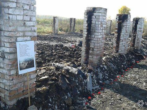 Милиция ищет поджигателей приюта «Верный» вКемерове, где погибли неменее 100 собак
