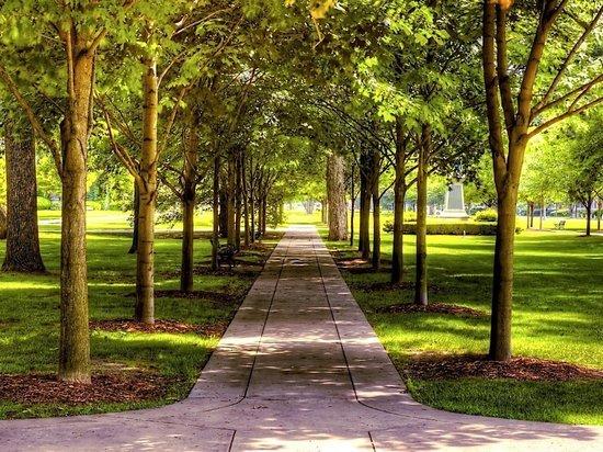 Всё для жизни: Междуреченск и Мариинск получат 23,1 млн рублей на парки