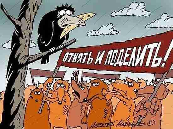 В Кузбассе идут садовые революции